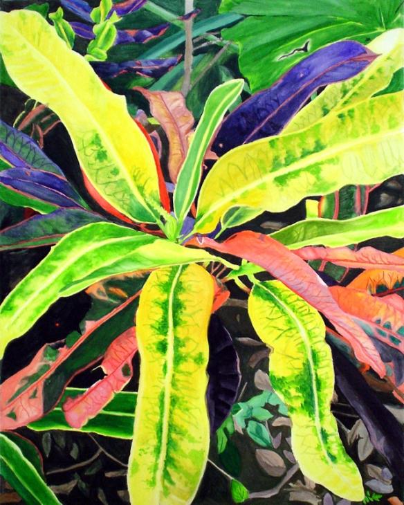 """Croton"", Gouache, 11x14 in."