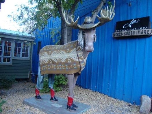 park city moose, park city utah