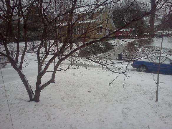 snowy-yard