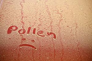 pollen sad face